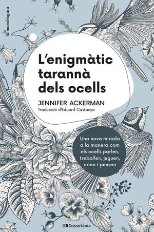 L'ENIGMATIC TARANNA DELS OCELLS