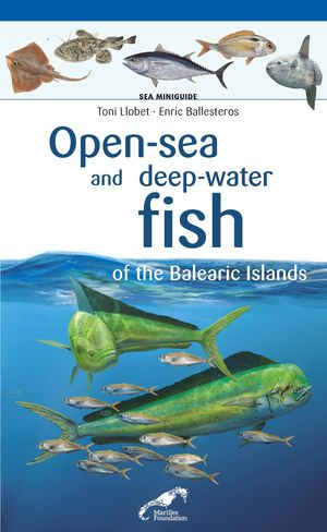 OPEN-SEA AND DEEP-WATER FISH OF THE BALEARIC ISLANDS